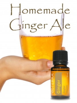 gingerale copy